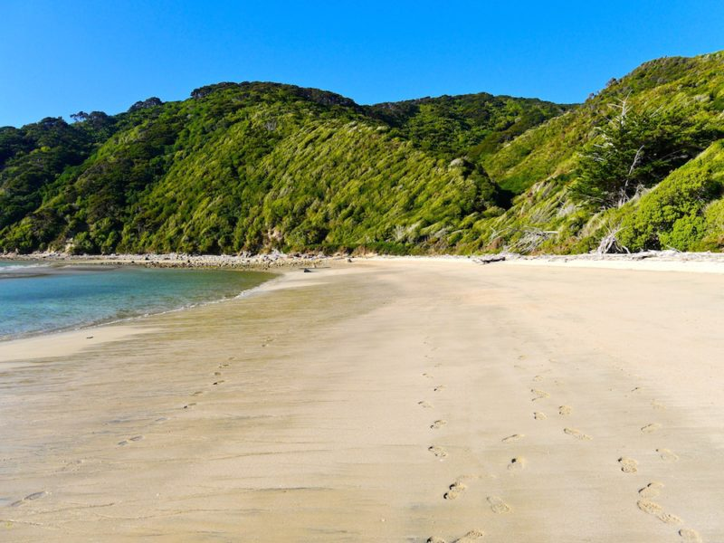 must see places in New Zealand, Abel Tasman National Park