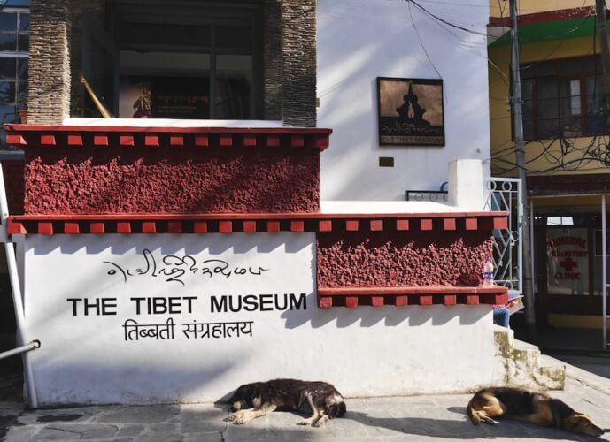 the Tibet Museum, McLeod Ganj, Dharamsala, India