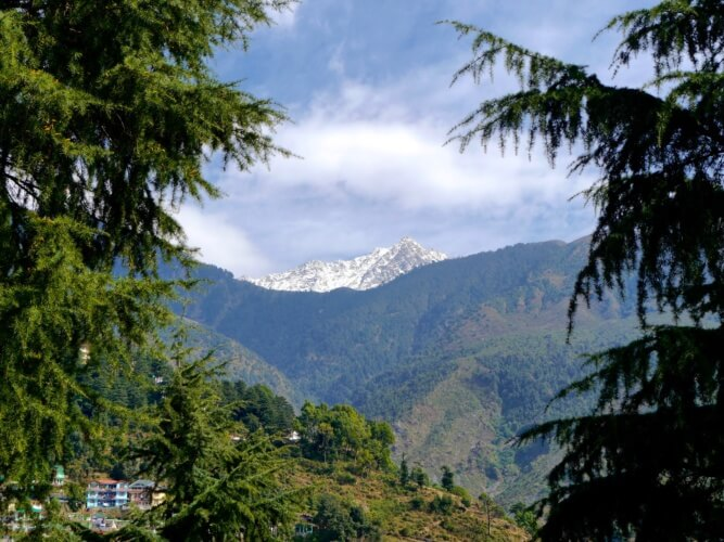 our view from Moonwalk Residency, McLeod Ganj