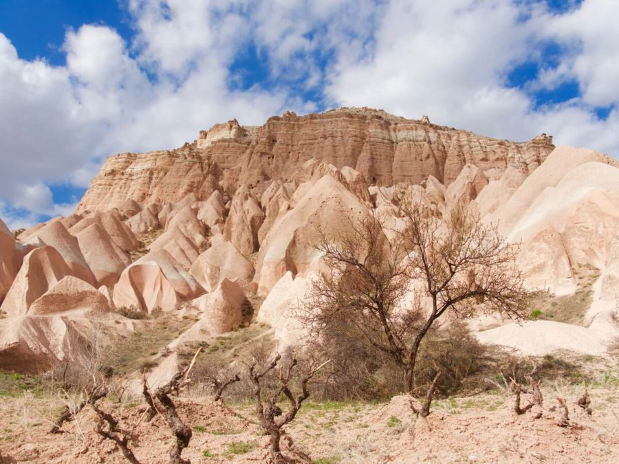Pink and Red Valley, Cappadocia